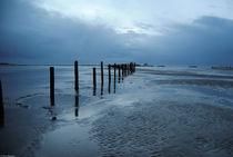 Holzpfeiler in der Nordsee von lynn-ba