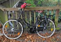 Fahrrad by Edith Diewald