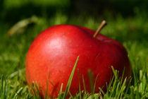 Der Apfel... von Thomas Haas