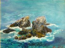 Seal Rock by Renuka Pillai