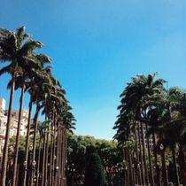 Dia de sol  von Lucas Coutinho