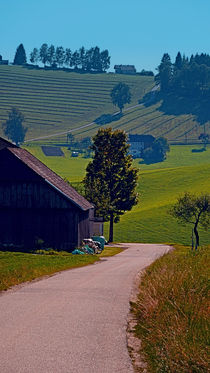 Traditioneller Hof mit tollem Hintergrund | Landschaftsfotografie von Patrick Jobst