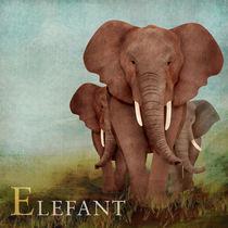 ABC Poster - E Elefant von Gaby Jungkeit
