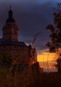 Burg Falkenstein von Jan Blümel