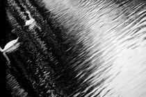 Sternbild  von Bastian  Kienitz