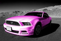 Pink Mustang  by Rob Hawkins