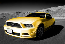 Yellow Mustang von Rob Hawkins