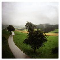 Weg by Maximilian Lips