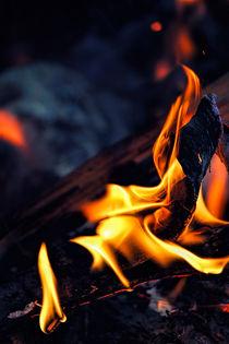 Midnight Fire von Vicki Field