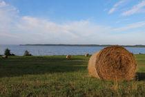 Strohballen am See von fotowelt-luebeck