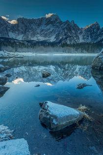 frozen beauty von Bor Rojnik