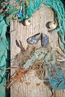 Meeresstillleben... von loewenherz-artwork