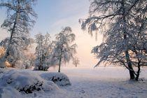 Eiskalter Wintermorgen by Bruno Schmidiger
