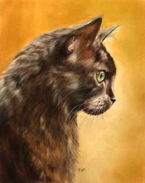 Katzenprofil (Cat Profile) by Christina Frenken