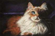 Schattenkatze (Shadow cat) von Christina Frenken