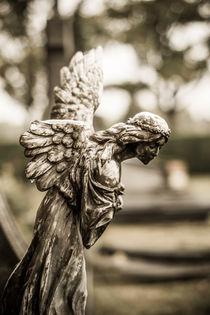 Broken wing von Martin Beerens