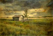 Country Life von Annie Snel - van der Klok