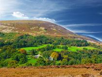 Yorkshire, at it,s best. von Robert Gipson