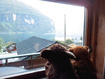 Blick aus dem Fenster von Olga Sander