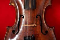 Geige von sylbe