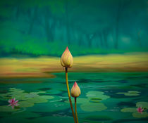 Lotus Buds by Peter  Awax