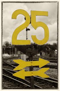 Twenty Five  by Rob Hawkins