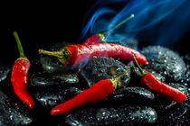 Hot Chili fever von Jürgen Seibertz