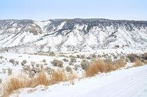 Winterliche Panorama im Yellowstone von Marianne Drews