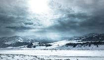 Das Lamartal im winterlichen Yellowstone by Marianne Drews