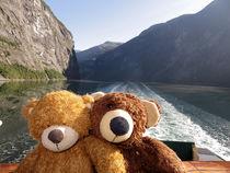 mit Geirangerfjord im Rücken von Olga Sander