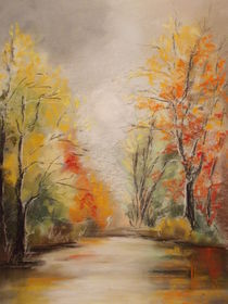 Herbst im Donauried von Dorothy Maurus
