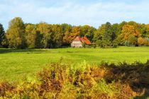 Bauernhaus in der Lüneburger Heide von gscheffbuch