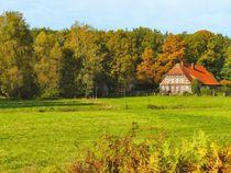 Herbst im Heidekreis von gscheffbuch