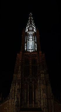 Münsterscanning, Münster Ulm von Thomas Haas