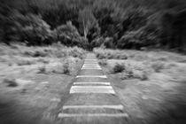 Der Knochenweg von Christina Beyer