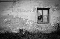 Ich sehe was, was du nicht siehst! by Christina Beyer