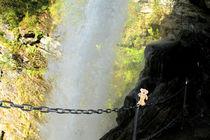 Teddybär hinter eineme Wasserfall von Olga Sander
