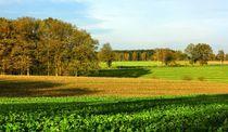 Herbstlandschaft by gscheffbuch