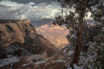 The Grand Canyon II von Zohar Lindenbaum