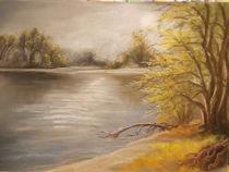 Morgennebel an der Donau von Dorothy Maurus