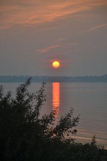 Abendsonne von Ute Bauduin