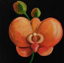 orangene Orchidee von Barbara Kaiser