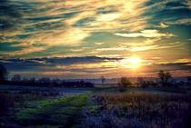 December Dusk von Vicki Field