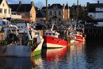 Boats At The Dock by Aidan Moran