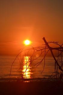 Sonnenuntergang  von Ute Bauduin