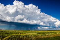 Die Wolke von Marianne Drews
