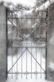 Das Tor zum himmlischen Frieden by Marianne Drews