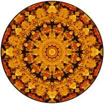 Cheerful Mandala by Richard H. Jones