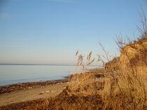 Ufer von Ute Bauduin
