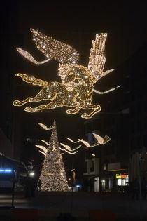 Lichter von Ute Bauduin